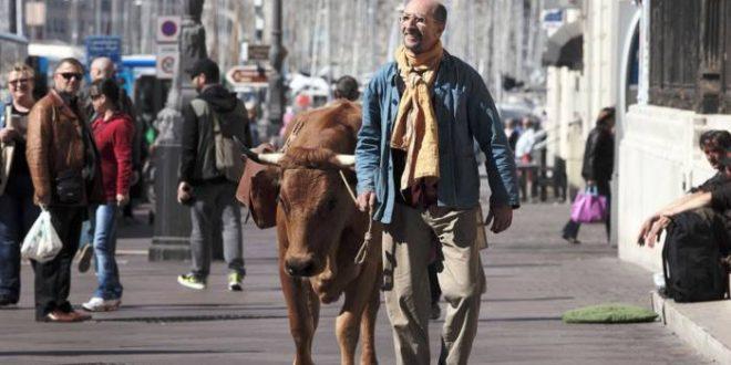 Fatah e sua vaca Jacqueline vivem situações que expõem o choque de realidade de quem vive e sobrevive bem longe do padrão europeu   Fotos: Divulgação