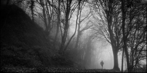 Cacalo_Monte Verde_juan-niebla-bn_1000