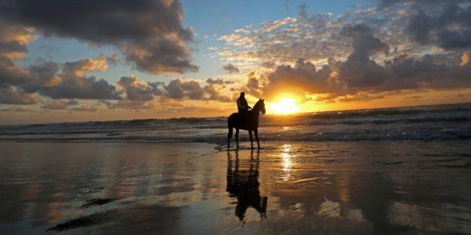 Cacalo_Cavalo e praia 01