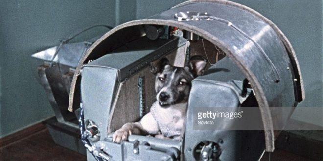 Crédito: Agência Espacial Soviética/reprodução