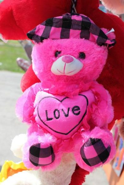 (Pink Teddy CC0 Creative Commons)