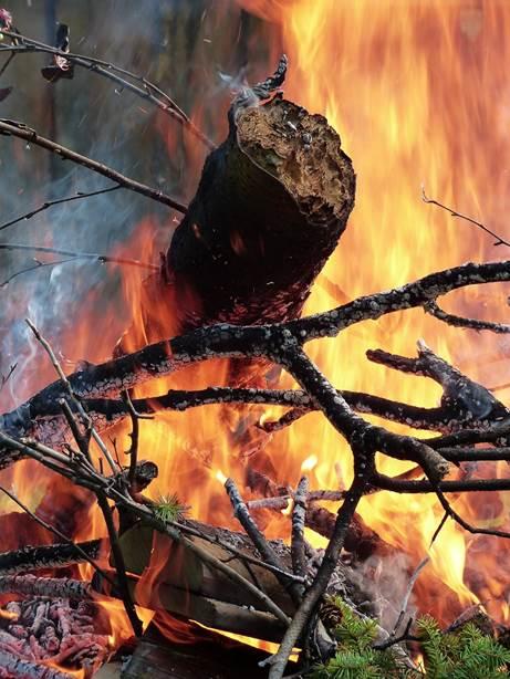 O homem sempre foi considerado o único animal capaz de dominar o fogo (foto: werner22brigitte/CreativeCommons)