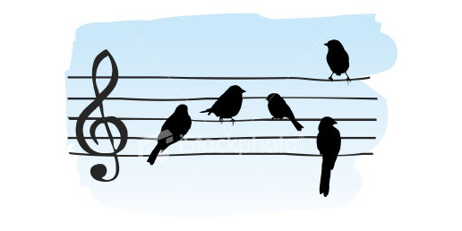 Cacalo_ist2_5128967_birds_on_a_wire
